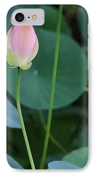 Pink Lotus Buds Phone Case by Sabrina L Ryan
