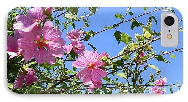 Pink Musk Mallow Phone Case by Pamela Patch