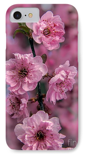 Pink On Pink IPhone Case by Robert Bales