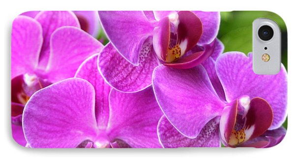 IPhone Case featuring the photograph Pink Orchids B by Cindy Lee Longhini