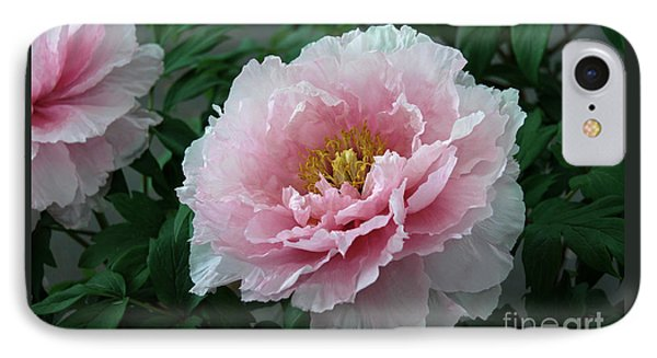 Pink Peony Flowers Series 2 IPhone Case