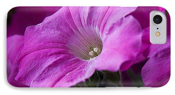 Pink Petunia II IPhone Case by Michael Friedman