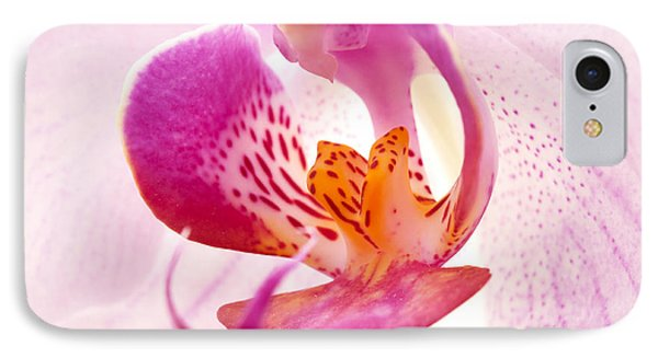 Pink Phalaenopsis IPhone Case by Fabrizio Troiani