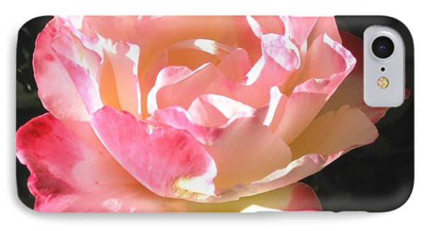 IPhone Case featuring the photograph Pink Rose by Sue Halstenberg