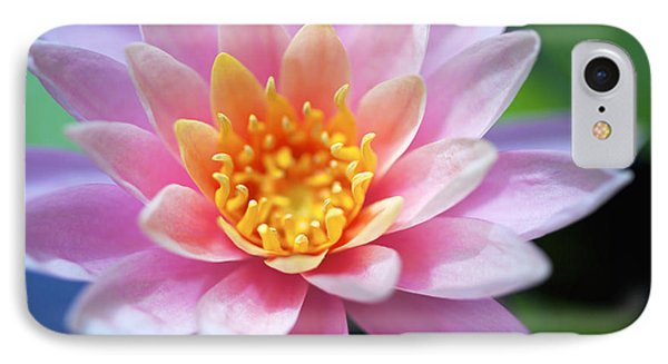 Pink Water Lily Phone Case by Kicka Witte