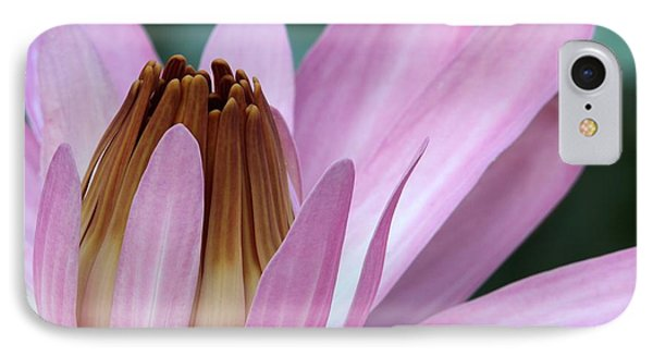 Pink Water Lily Macro Phone Case by Sabrina L Ryan