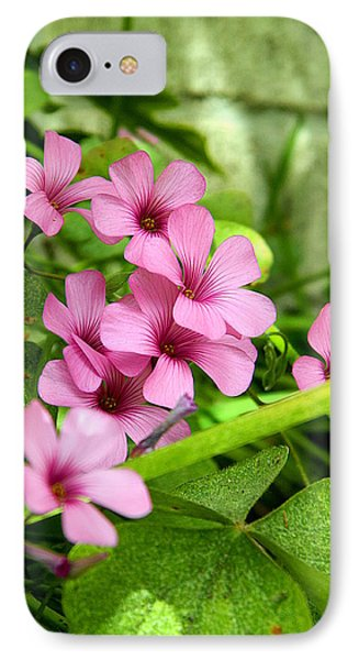 IPhone Case featuring the photograph Pink Wild Flowers by Ester  Rogers