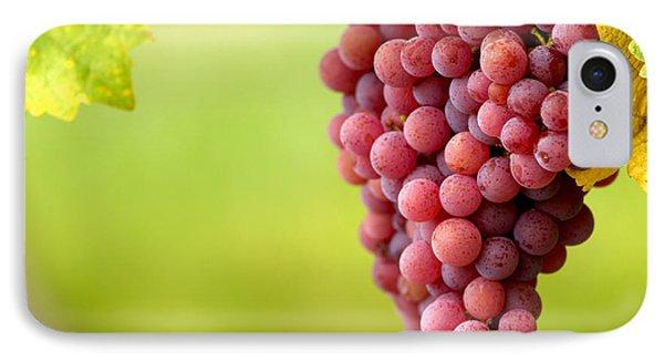 Pinot Noir Grapes Phone Case by Jeremy Walker