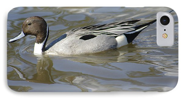 Pintail Duck Phone Case by Marilyn Wilson