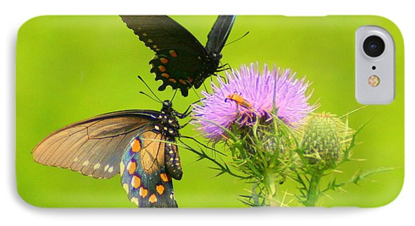 IPhone Case featuring the photograph Pipevine Swallowtails In Tandem by Laurel Talabere