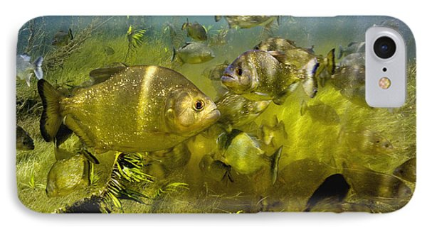 Piranhas Phone Case by Peter Scoones