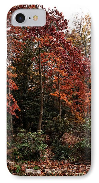 Place Of Beauty Phone Case by John Rizzuto