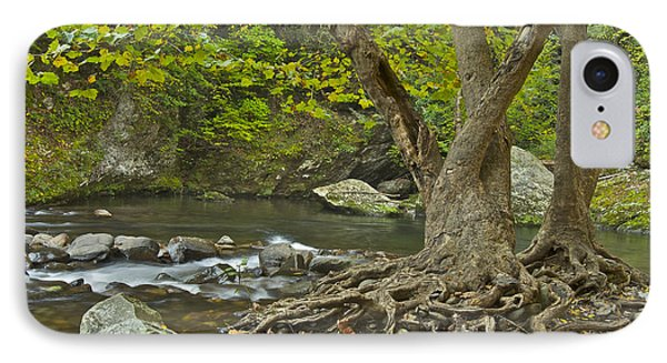 Planted By The Rivers Of Water Phone Case by Michael Peychich