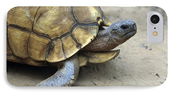 Ploughshare Tortoise Phone Case by Chris Hellier