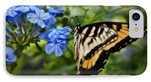 IPhone Case featuring the photograph Plumbago And Swallowtail by Steven Sparks