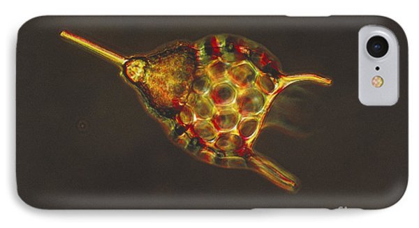 Podocyrtis Triacantha Lm Phone Case by Eric V Grave