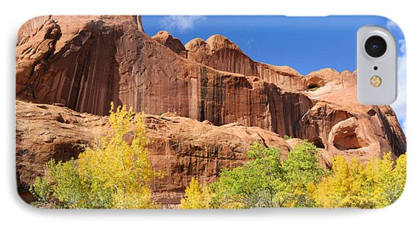 Poison Spider Mesa In The Fall Phone Case by Gary Whitton