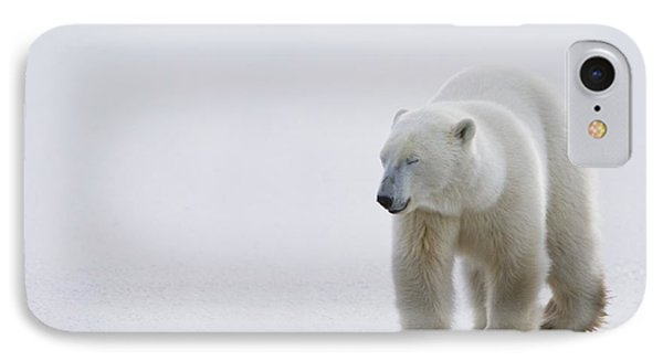 Polar Bear Ursus Maritimus Walking On IPhone Case