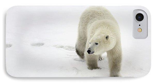 Polar Bear Walking IPhone Case by Richard Wear