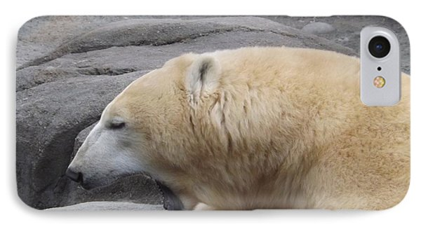 Polar Bear Yawn Phone Case by Sara  Raber