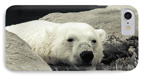 Polar Relaxation IPhone Case