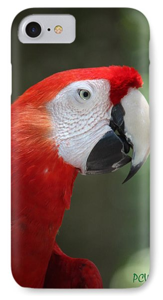 IPhone Case featuring the photograph Polly by Patrick Witz