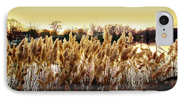 Pond Grasses Phone Case by Brian Wallace