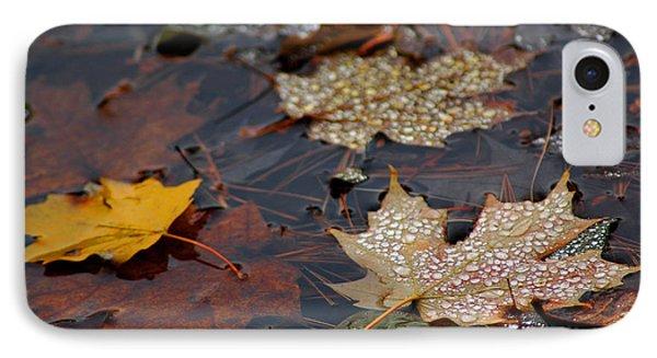 Pond Leaf Dew Drops Phone Case by LeeAnn McLaneGoetz McLaneGoetzStudioLLCcom