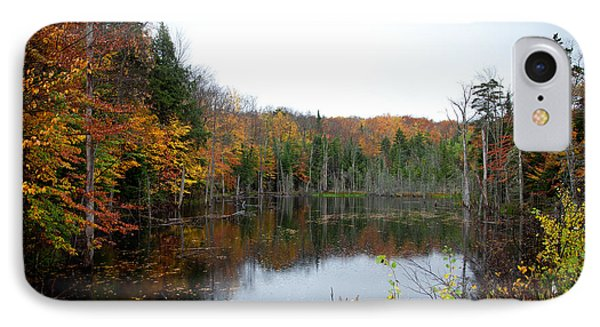 Pond On Limekiln Road In Inlet New York Phone Case by David Patterson