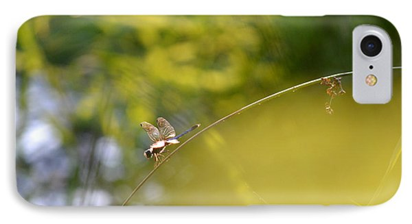 IPhone Case featuring the photograph Pond-side Perch by JD Grimes