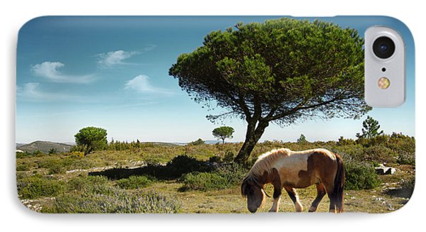 Pony Pasturing IPhone Case by Carlos Caetano