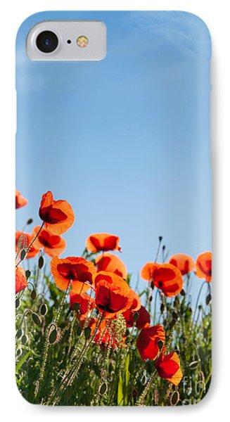 Poppy Flowers 01 IPhone Case by Nailia Schwarz