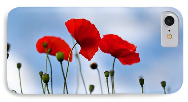 Poppy Flowers 08 IPhone Case by Nailia Schwarz