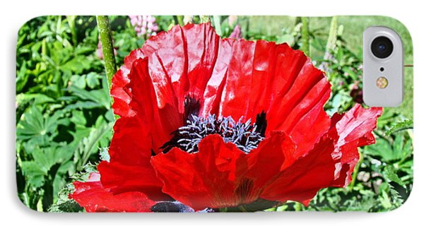 IPhone Case featuring the photograph Poppy by Nick Kloepping