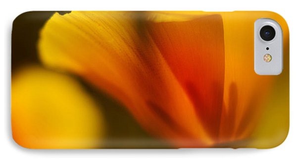 Poppy IPhone Case by Ralph Vazquez