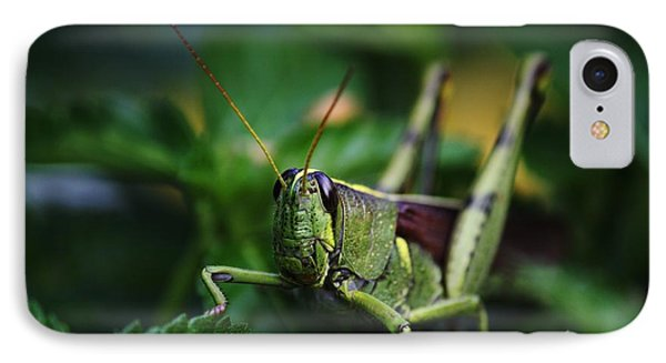 Portrait Of A Grasshopper Phone Case by Theresa Willingham