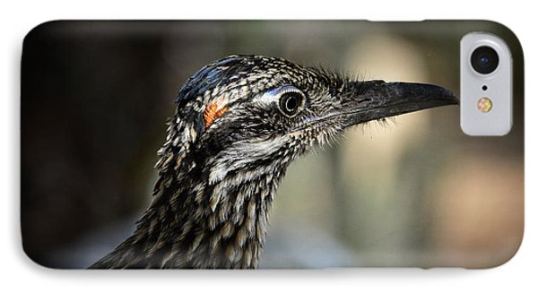 Portrait Of A Roadrunner  IPhone Case by Saija  Lehtonen
