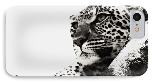 Portrait Of An African Leopard Phone Case by Carson Ganci