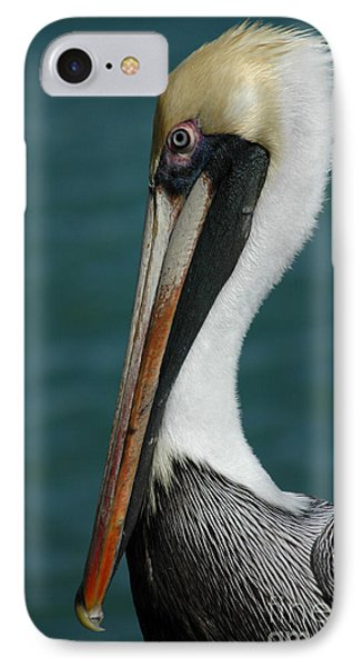 Posing For The Tourists IPhone Case by Vivian Christopher