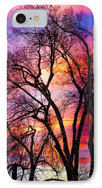 Powerful Trees Phone Case by James BO  Insogna