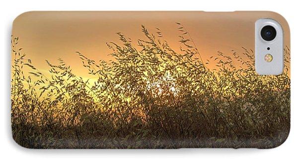 Prairie Dusk IPhone Case by Leanna Lomanski