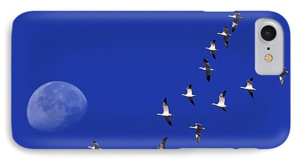 Prairie Migration Phone Case by Tony Beck