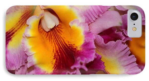 Pretty And Colorful Orchids Phone Case by Sabrina L Ryan