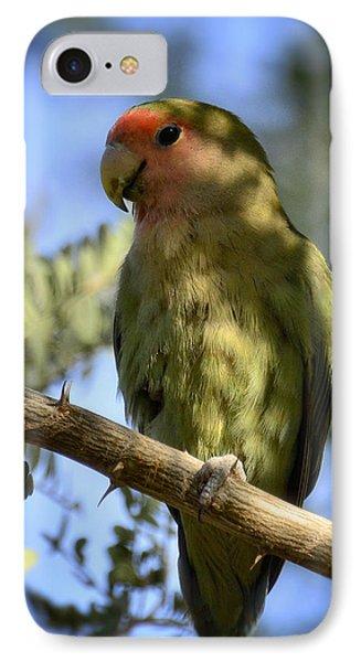 Pretty Bird IPhone 7 Case by Saija  Lehtonen