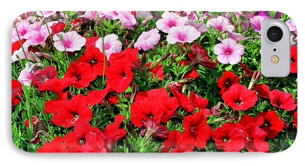 Pretty Petunias IPhone Case by Laurel Talabere