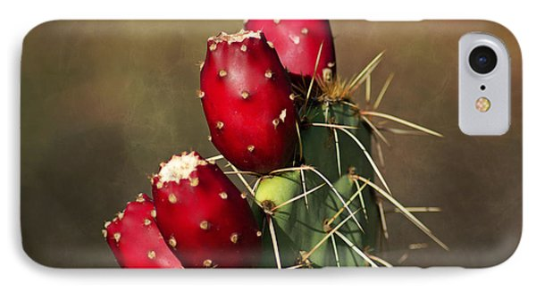 Prickley Pear Fruit IPhone Case by Donna Greene