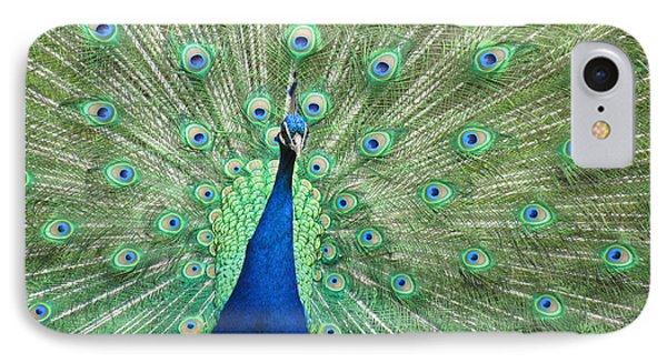 Proud Peacock Phone Case by Bonnie Muir