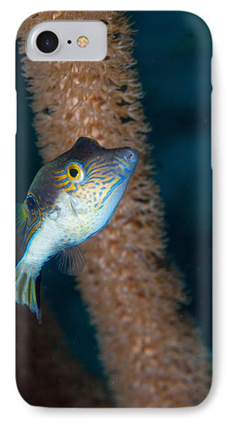 Puffer Profile IPhone Case