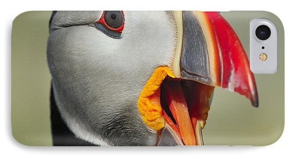 Puffin Portrait Phone Case by Tony Beck