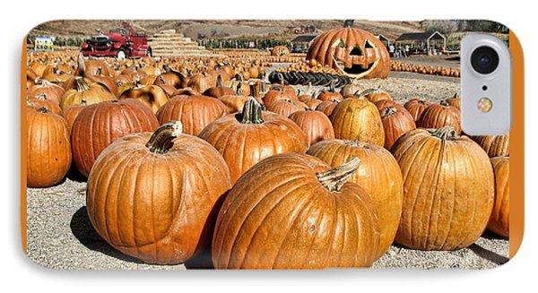 Pumpkin Patch 3 IPhone Case